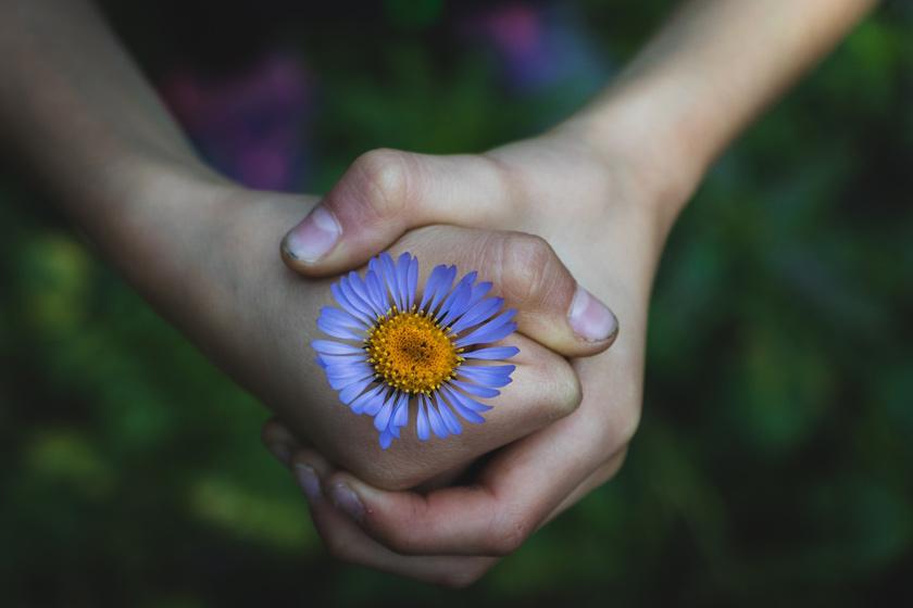 Практика благодарности для детей