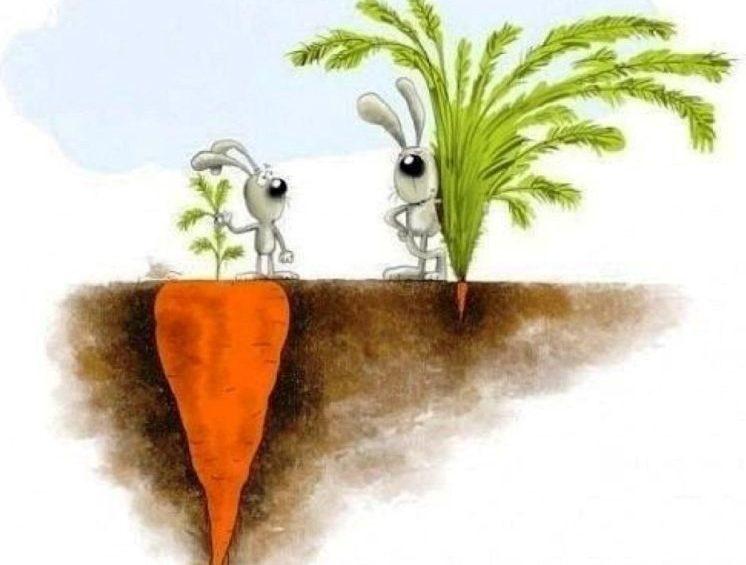 Как возвысить других в наших глазах, если мы видим только недостатки